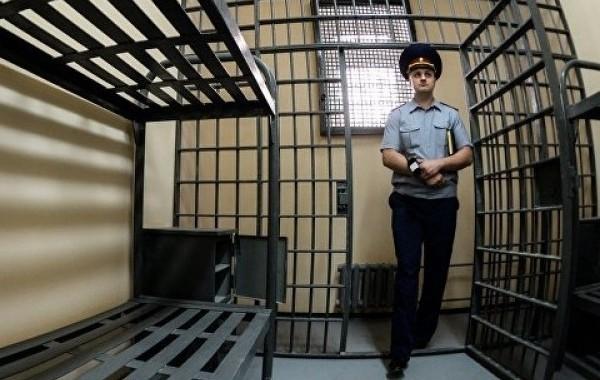 В ЛДПР призвали провести уголовную амнистию