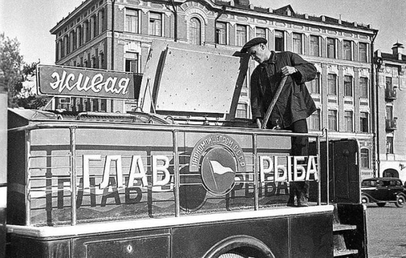 Почему рыба в СССР была дешевой и доступной