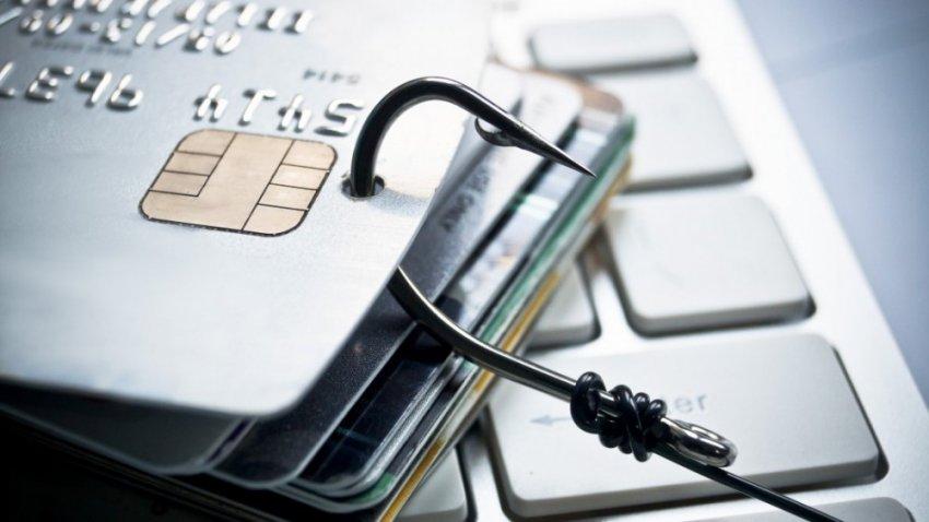 4 истории о современных мошенниках в сфере высоких технологий