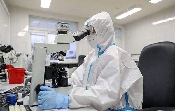 За сутки в России выявили более 8700 новых случаев коронавируса