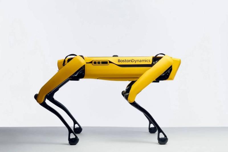 Необычные роботы, которые есть в мире
