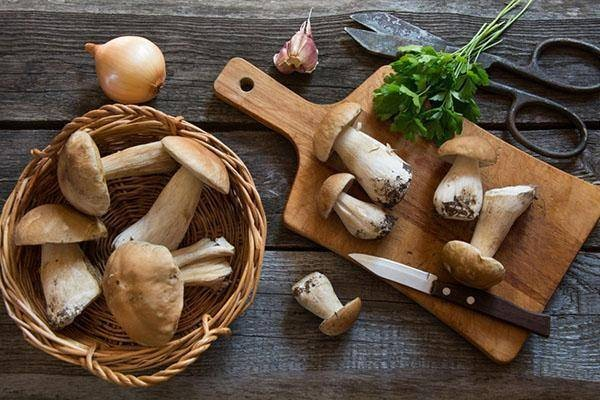 Какие грибы можно собрать в июне-июле 2021 года в Подмосковье и что из них приготовить