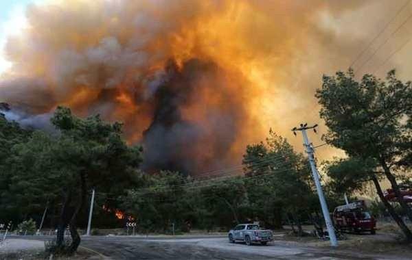 Возросло число погибших в результате пожаров в Турции