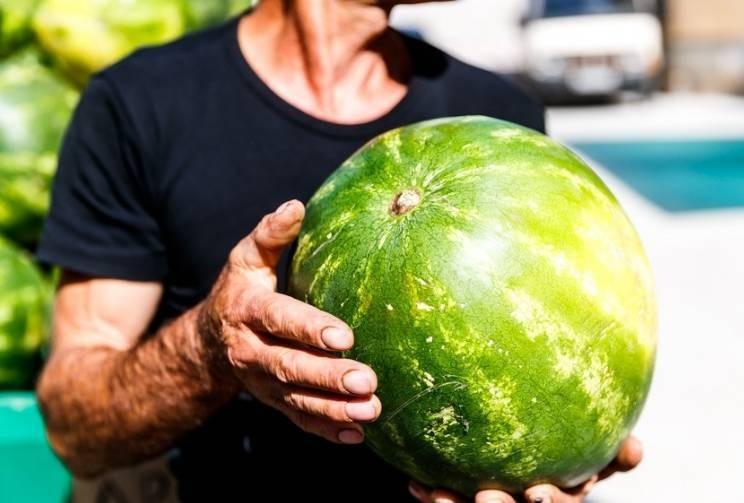 Каких рекомендаций стоит придерживаться при выборе арбуза, чтобы был сладкий и спелый