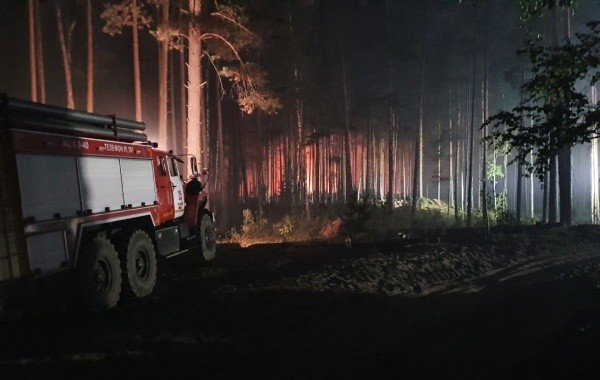 Глава Марий Эл заявил о локализации лесного пожара