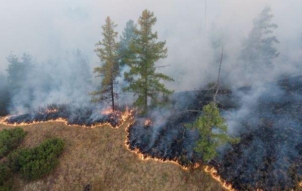 В Башкирии проходит эвакуация населения из-за лесных пожаров