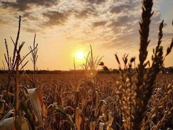 День осеннего равноденствия Мабон 22 сентября может изменить судьбу