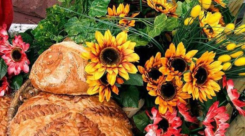 Красивые поздравления в стихах и прозе с Днем сельского хозяйства коллегам
