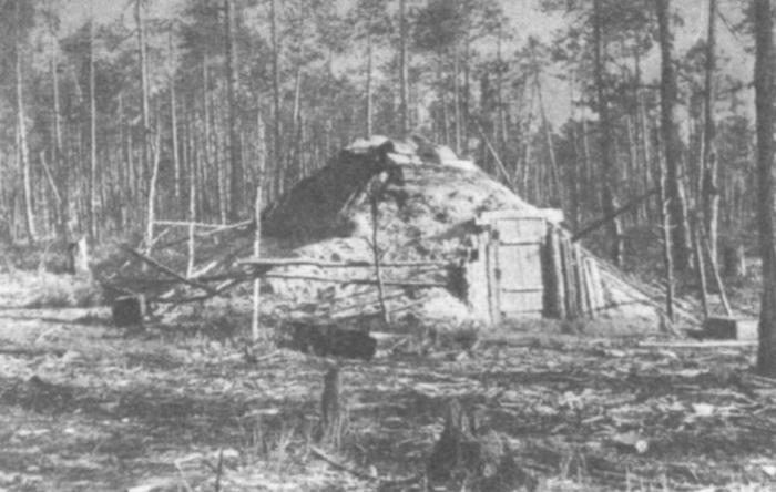 Почему в России строили землянки